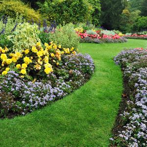 Pomysły na atrakcyjne ogrodzenie ogródka