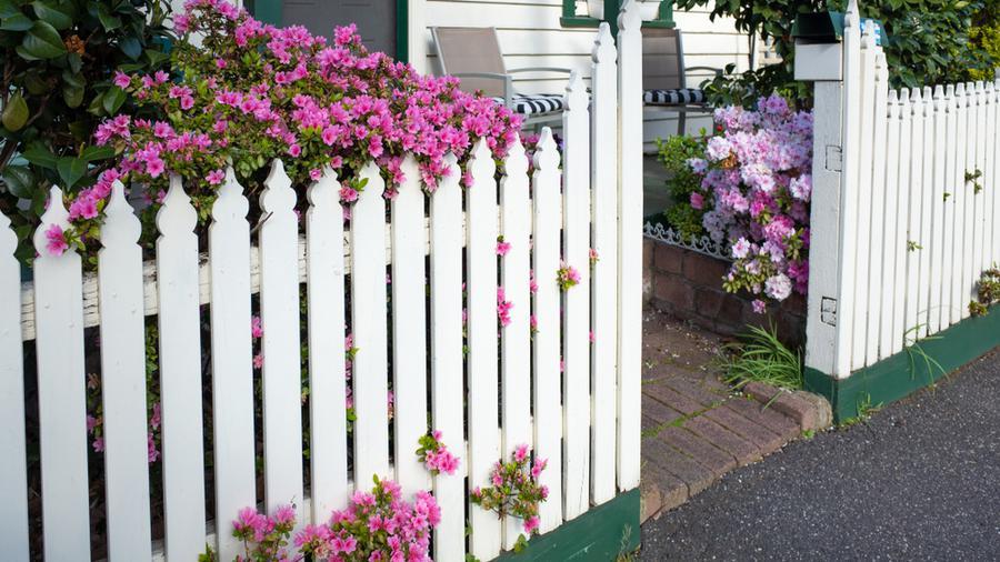 Aranżacja ogrodzenia