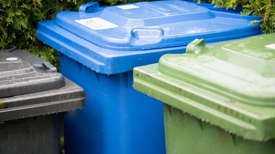 Czy ogrodzenie śmietnika jest konieczne i jakie sprawdzi się najlepiej?