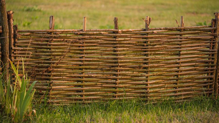 Ogrodzenie wiklinowe - czy jest lepsze niż ogrodzenie panelowe?