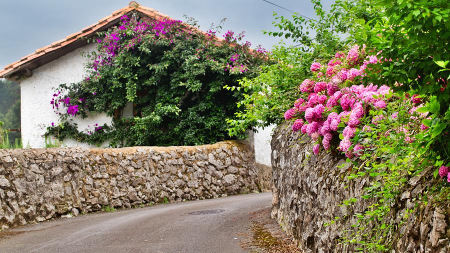 Ogrodzenie z kamienia a ogrodzenie panelowe - co częściej wybierają inwestorzy?