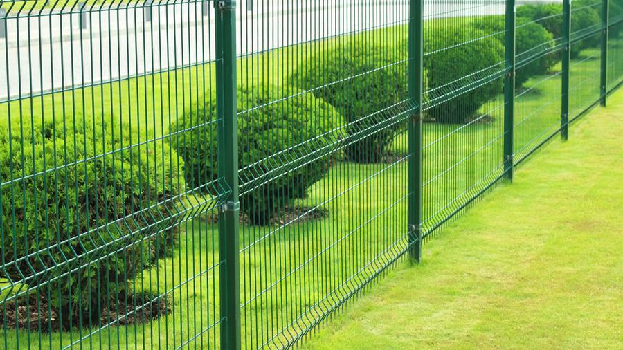 Niebanalny pomysł na rośliny przy ogrodzeniu