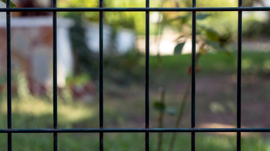 Przesłony ogrodzeniowe – gdzie możemy je wykorzystać?